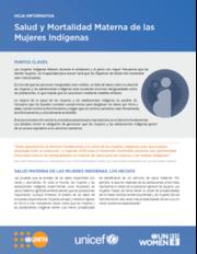 Salud y mortalidad materna de las mujeres indígenas